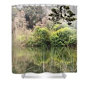 Fog And Reeds Shower Curtain