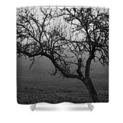 Fog And Solitude Shower Curtain