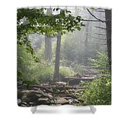 Fog In The Wilderness Shower Curtain