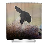 Fog On The Moor Shower Curtain