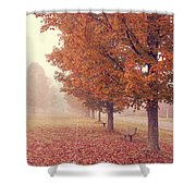 Foggy Autumn Morning Etna New Hampshire Shower Curtain