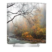 Foggy Autumn Shower Curtain