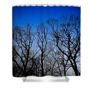 Foggy Blue Morning Shower Curtain