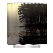 Foggy Bog Sunrise Shower Curtain