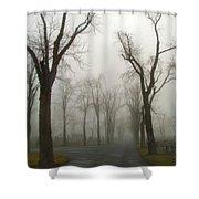 Foggy Cemetery Road Shower Curtain