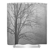 Foggy Days Shower Curtain