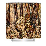 Foggy Forest Edge Shower Curtain