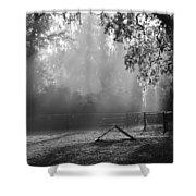 Foggy Morn At Dog Park Shower Curtain
