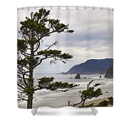 Foggy Morning At Tolovana Beach Oregon Shower Curtain