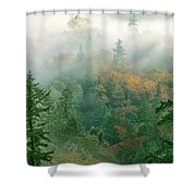 Foggy Morning In Humbolt County California Shower Curtain
