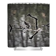 Foggy Morning Pondscape Shower Curtain