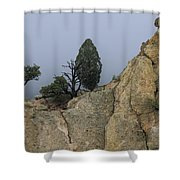 Foggy Morning Shower Curtain by Richard Smith