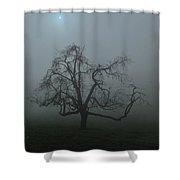Foggy Tree Shower Curtain