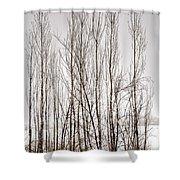 Foggy Winter Tree Fence 13271 Shower Curtain