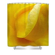 Folds Of A Rose - Digital Painting Effect Shower Curtain