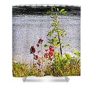 Foliage Along Iowa River Iowa City Ia Shower Curtain