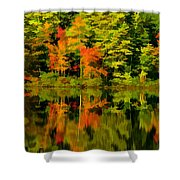Foliage In New Hampshire Shower Curtain