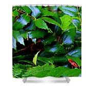 Foliage N Such Shower Curtain