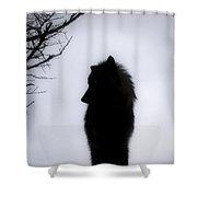 Wolf Folklore Shower Curtain