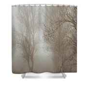 Follow It And Know Your Forests Shower Curtain