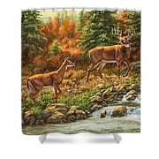 Whitetail Deer - Follow Me Shower Curtain by Crista Forest