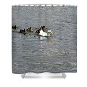 Follow The Leader Shower Curtain
