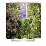 Follow The Path Shower Curtain