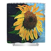 Follow The Sun Shower Curtain