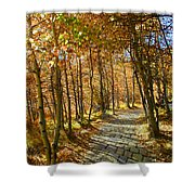 Follow The Yellow Brick Rd Shower Curtain