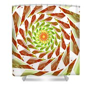 Abstract Swirls  Shower Curtain