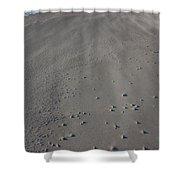 Folly Beach Sc Shower Curtain