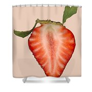 Food - Fruit - Slice Of Strawberry Shower Curtain by Mike Savad