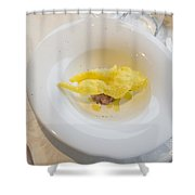 Food On The Plate Shower Curtain
