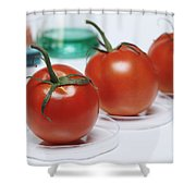 Food Research Shower Curtain