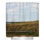 Footbridge Through The Dunes Shower Curtain