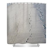 Footprints And Pawprints Shower Curtain