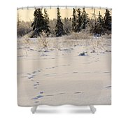 Footprints In Fresh Snow Shower Curtain