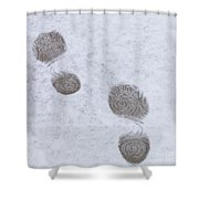 Footprints In The Snow Shower Curtain