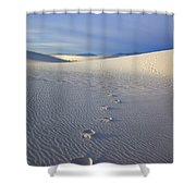Footprints Shower Curtain by Mike  Dawson
