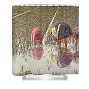 For Eighty Pennies Shower Curtain