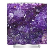 For Lovers Of Purple Shower Curtain