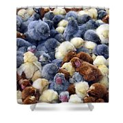 For Sale Baby Chicks Shower Curtain
