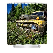 Fords View Shower Curtain