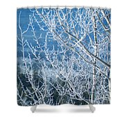 Foreground Frost Shower Curtain