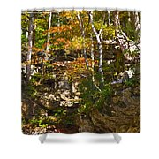 Forest Above The Cave Shower Curtain