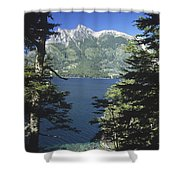 Forest And Lakes Lanin National Park Shower Curtain