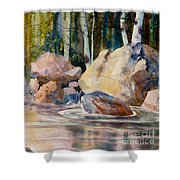 Forest And River Shower Curtain
