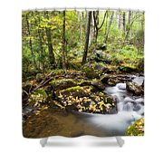 Forest And Stream Shower Curtain