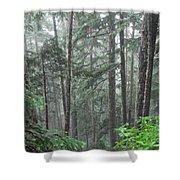 Forest Bluff Shower Curtain