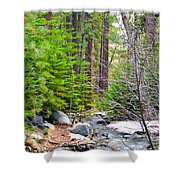 Forest Creek 2 Shower Curtain